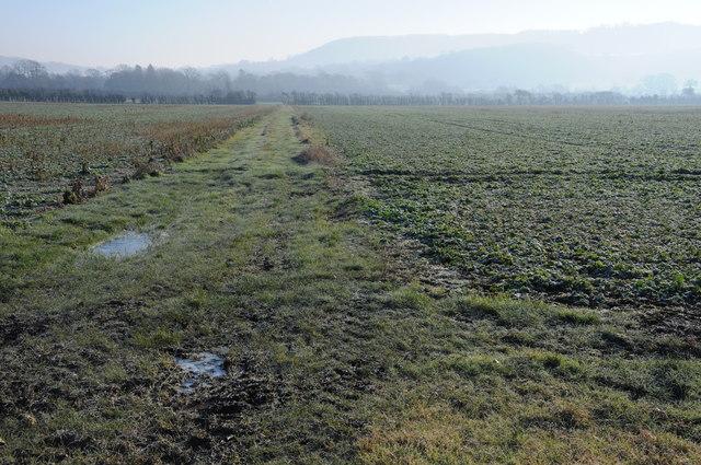 Arable land near Haresfield