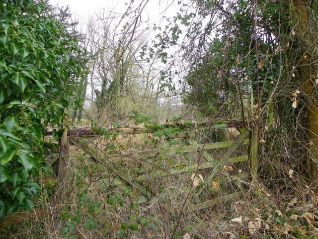 Old gate, Coombe Bissett