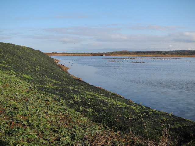 Fresh Marsh, Titchwell RSPB reserve