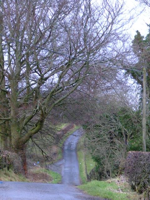 Flatterton Road
