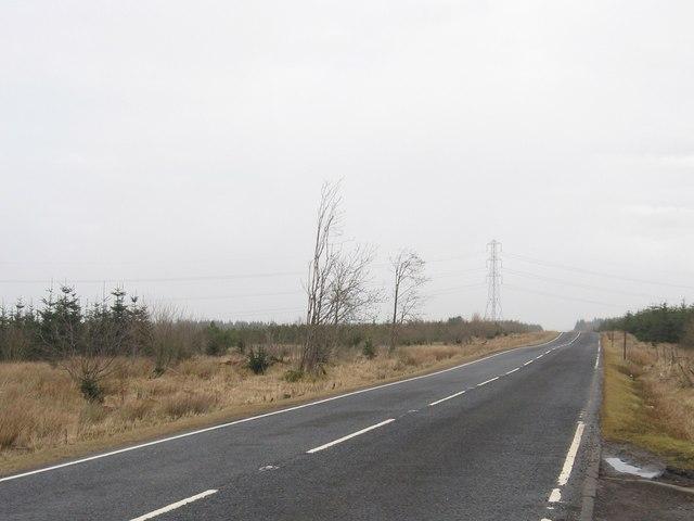 The A704 heading through Woodmuir Plantation