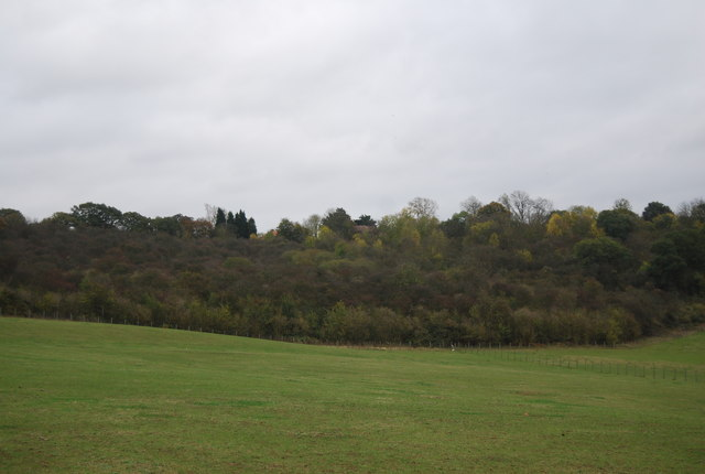 Northward Hill Reserve