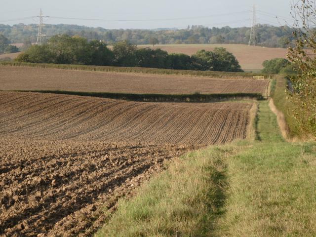 Cultivated fields, Upper Wawensmoor