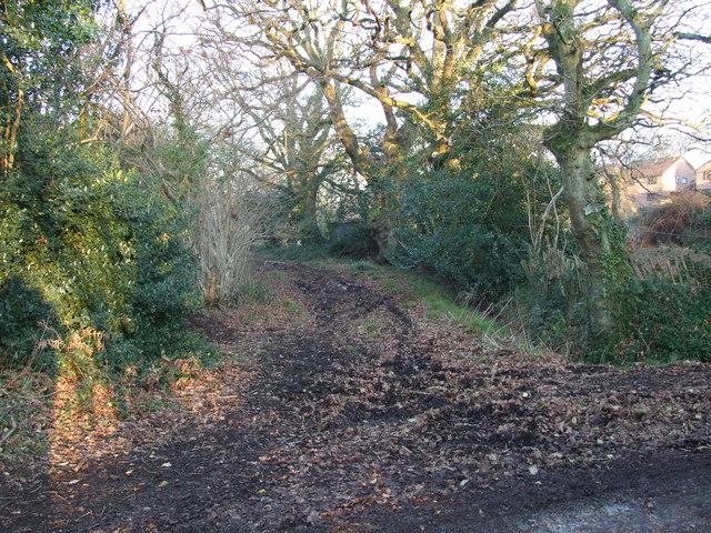 Track To Pilford Farm