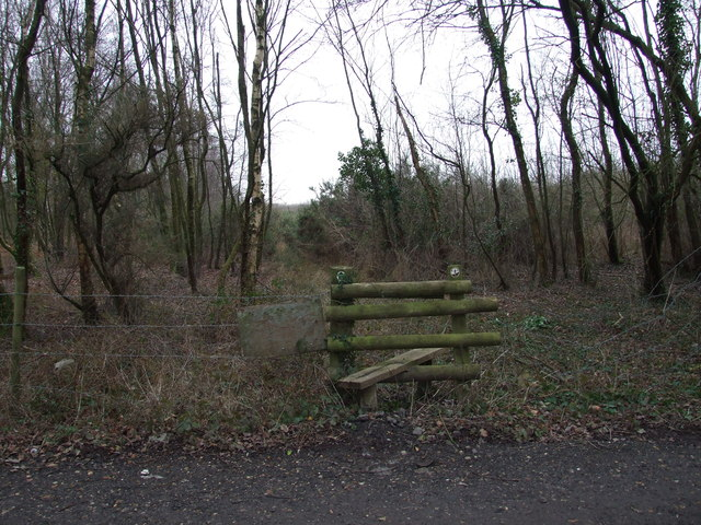 Stile Onto Open Access Land, Lower Common