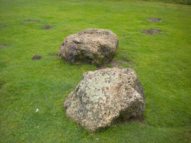 Hatfield forest Puddingstones