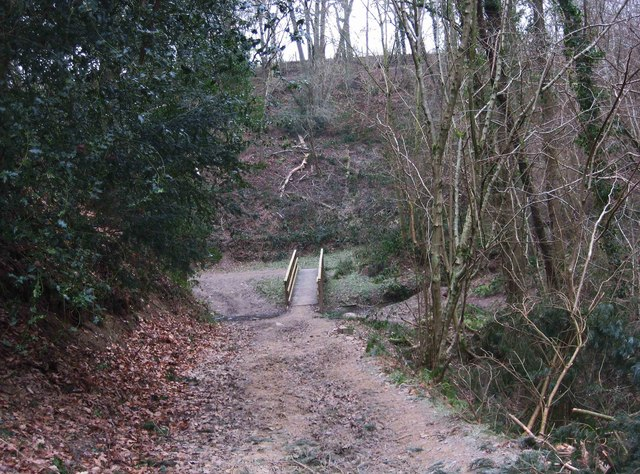 New footbridge in Eymore Wood near Trimpley