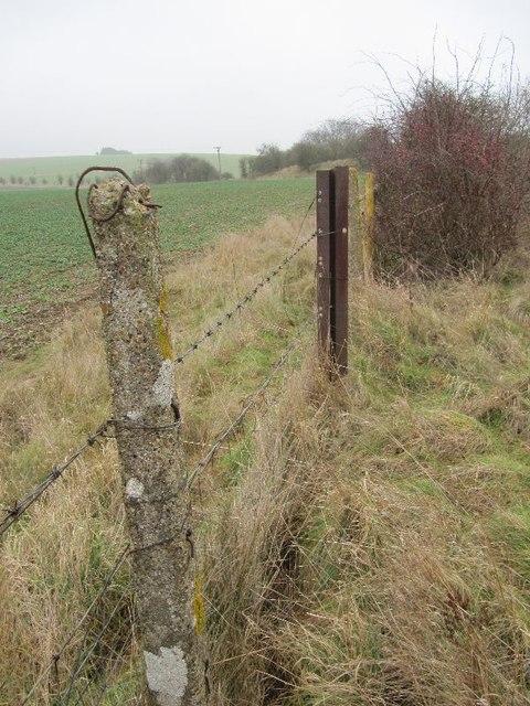 A rail fence post