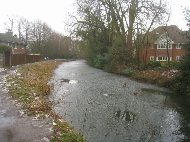 Basingstoke Canal by Reading Road Bridge