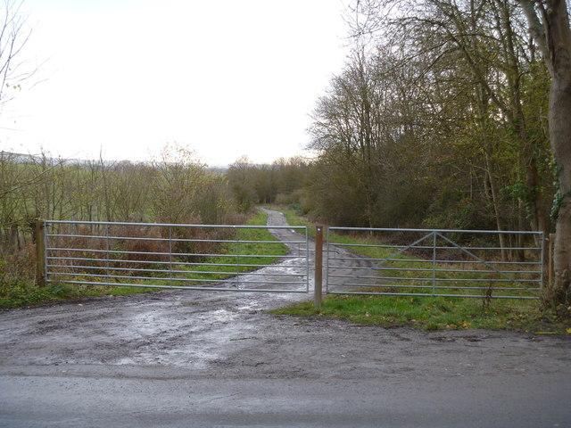 Bridleway meets road [2]