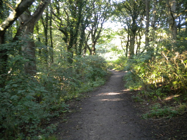 Pathway near Holiday centre