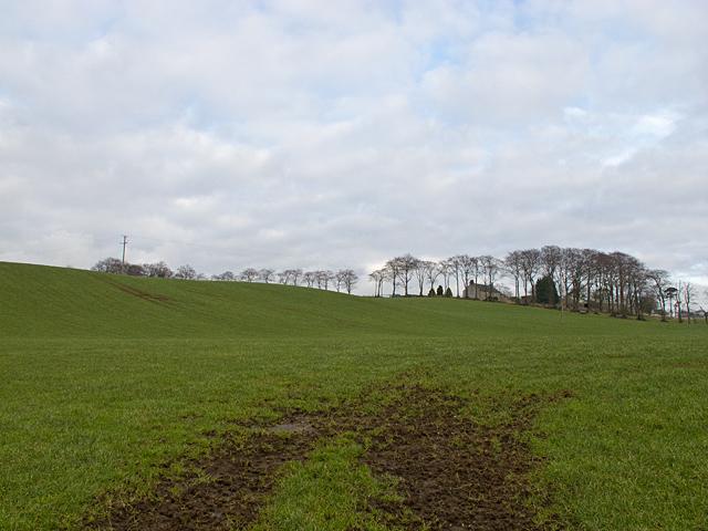 Farmland near Boagstown