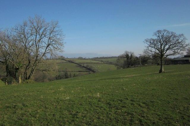 Field, Rexton