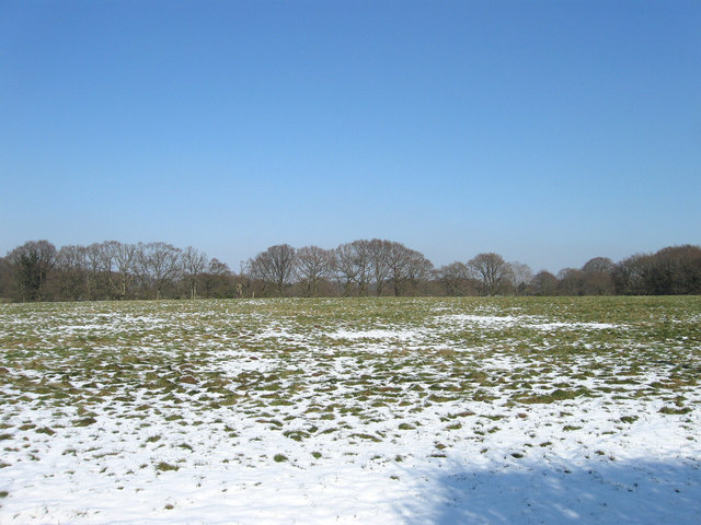 Crossways Field