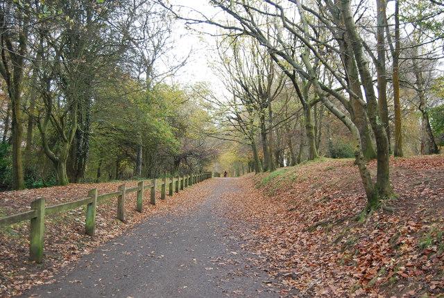 Footpath, Tilgate Park
