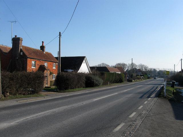 Holmes Hill
