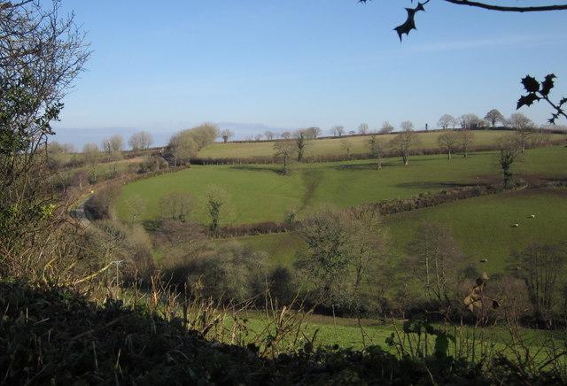 Valley side near Upcott Mill
