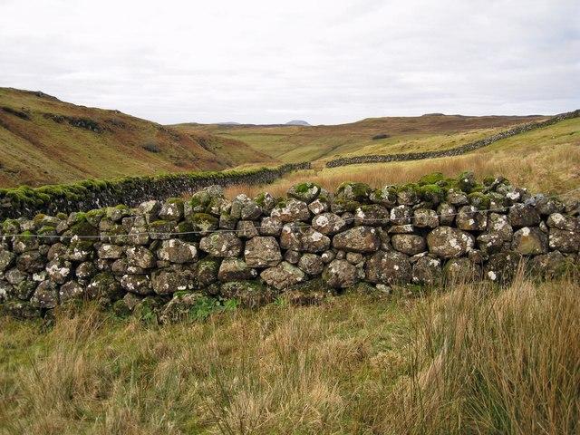 Stone pen in Glen Bracadale