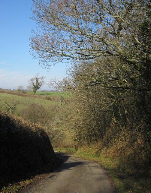 Lane to Upcott Mill