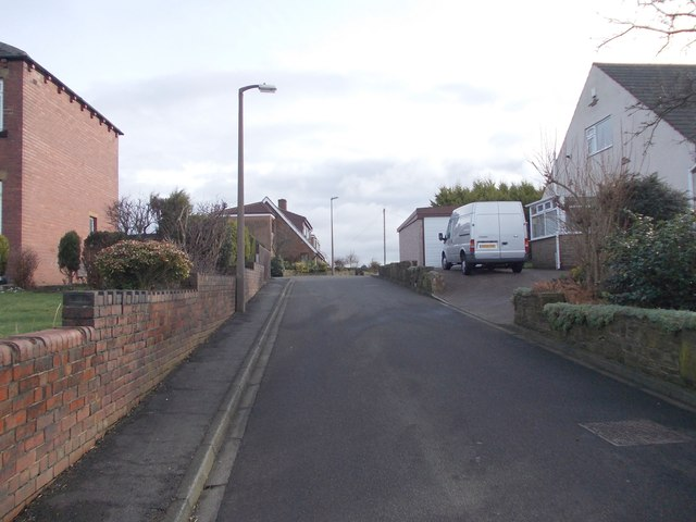 Plane Trees Close - Hunsworth Lane