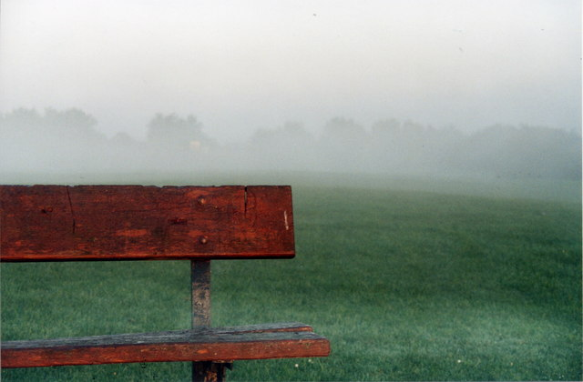 Morning Mist on the Lake 23
