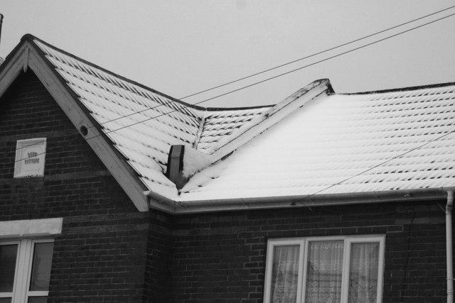 Snow 02.02.09 (2)
