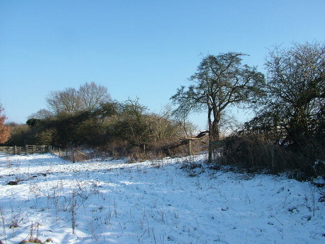 Snowy footpath on edge of nature conservation area