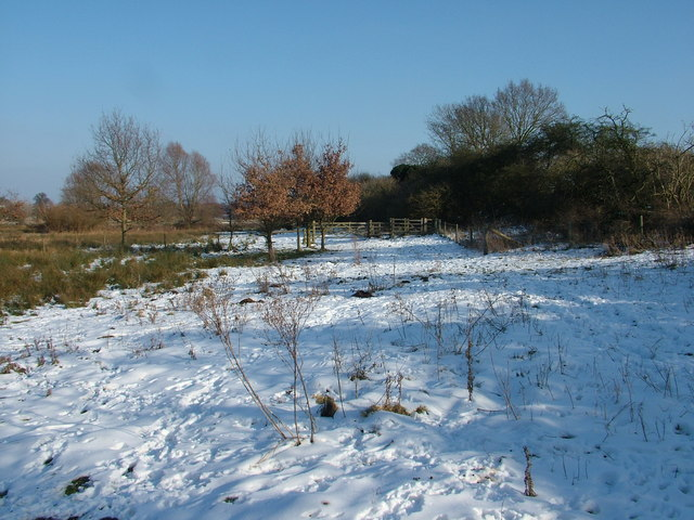 Well walked footpath in the snow