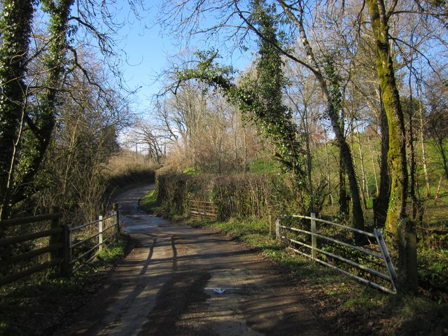 Bridge on lane near Buddle