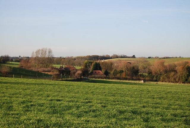 Shelvingford Farm