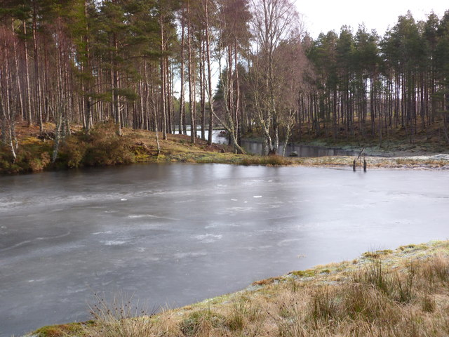 Reservoirs in Clashmore Woods