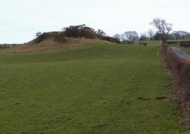 Mound near Westpark Farm