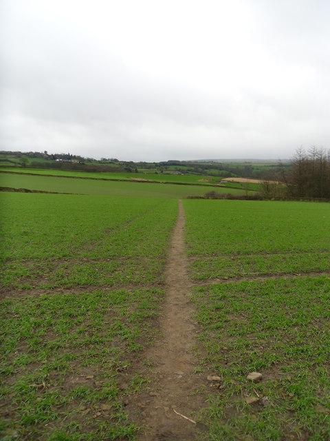 Path across Gadding moor.