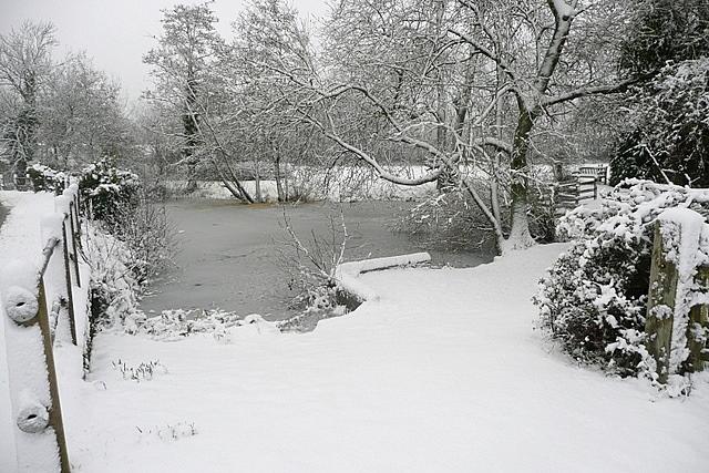 Plaistow pond in the snow
