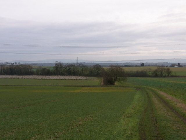 Track below Manor Farm, Atch Lench