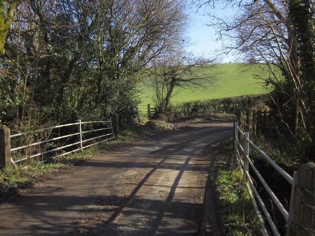 Bridge on lane near Buddle