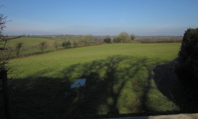 Field on Broadwood Down