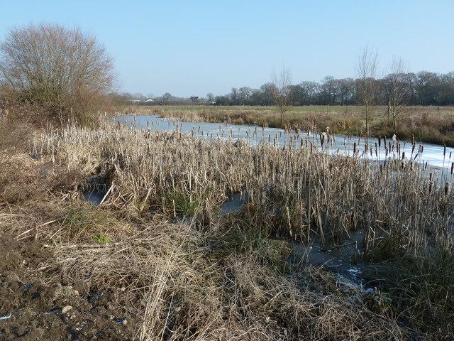 Frozen fishing ponds by Sake Ride Lane, bridleway 2393