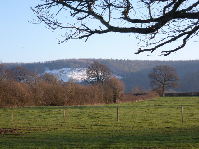 Okeford Fitzpaine: chalk quarry view from Shillingstone Lane