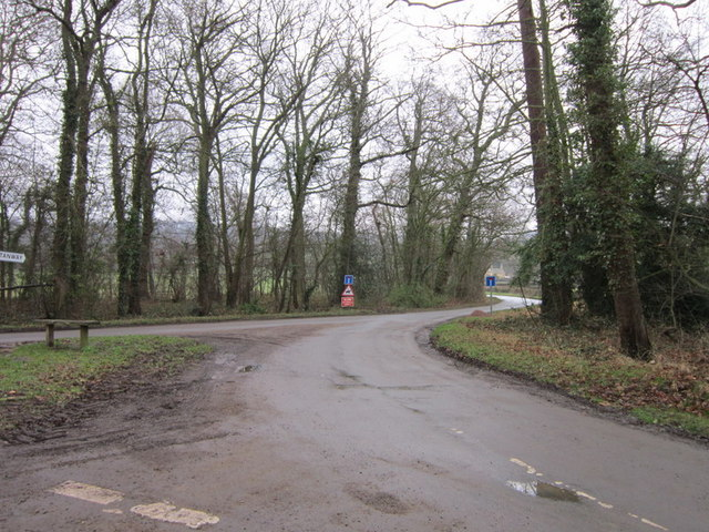 The road to Wood Stanway