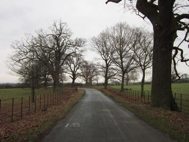 The road towards Stanton