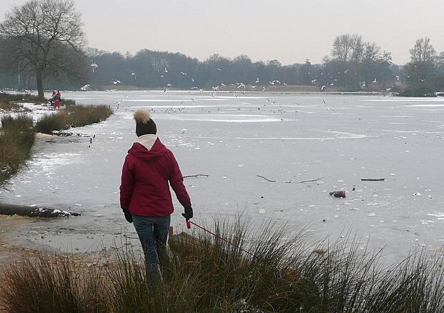 Walking next to Pen Ponds