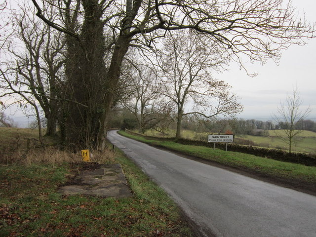 Buckle Lane towards Saintbury