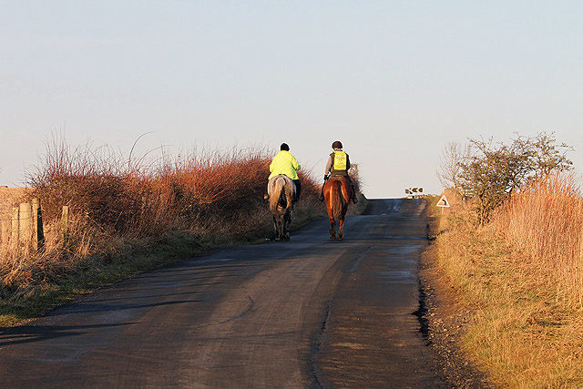 Horse riders at Lindean Moor