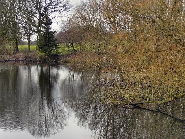Wildfowl Sanctuary off Hall Lane