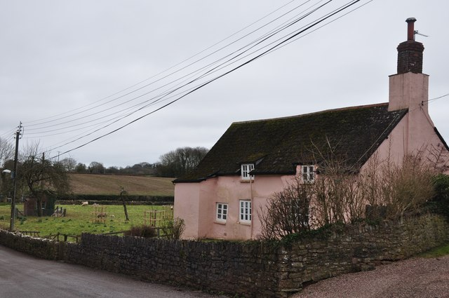 Holcombe Rogus : Steps Cottage