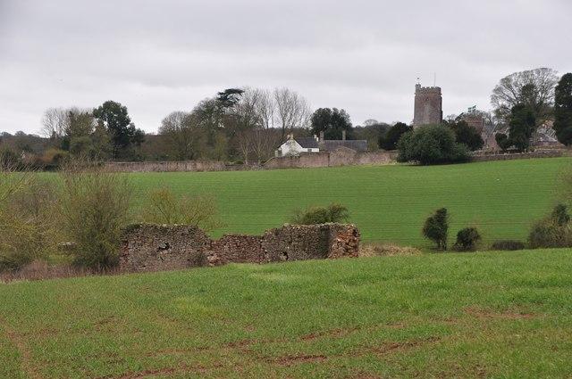 Mid Devon : Grassy View near Holcombe Rogus