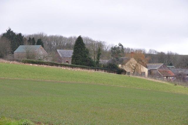 Mid Devon : Fenton Farm & Scenery
