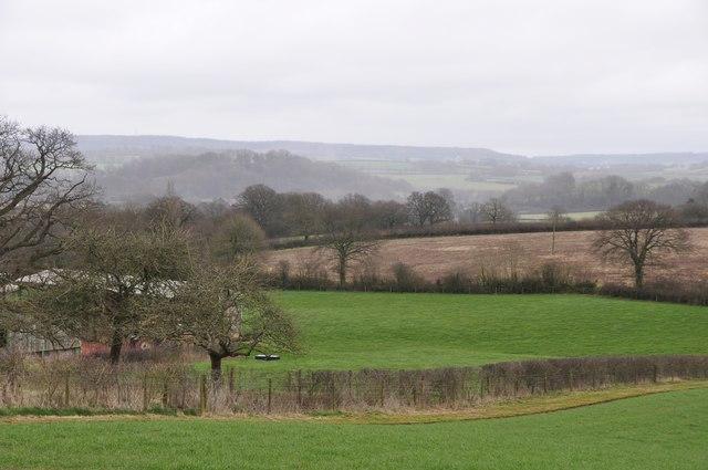 Mid Devon : Grassy Field & Surroundings