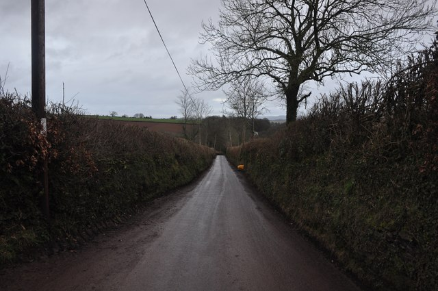 Taunton Deane : Country Road